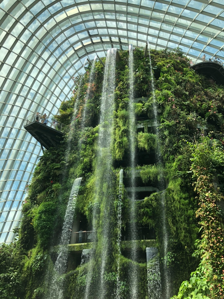 Waterfall inside the Cloud Forest Dome